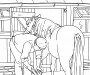 Coloring pages Horse care
