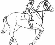 Free coloring and drawings Horse riding coloring Coloring page