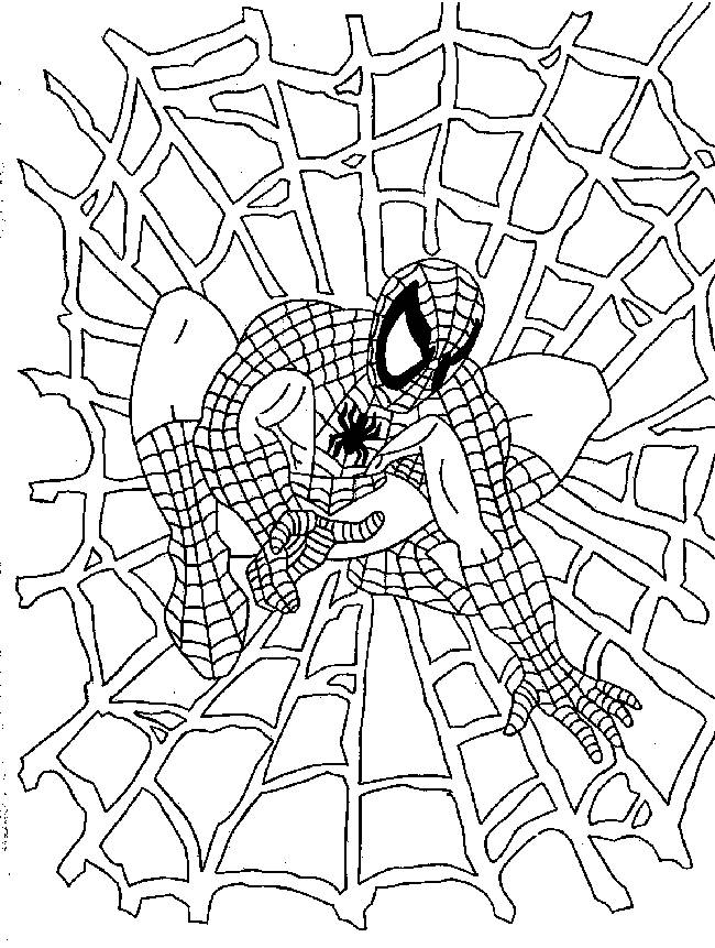 Free coloring and drawings Spiderman and Canvas Coloring page