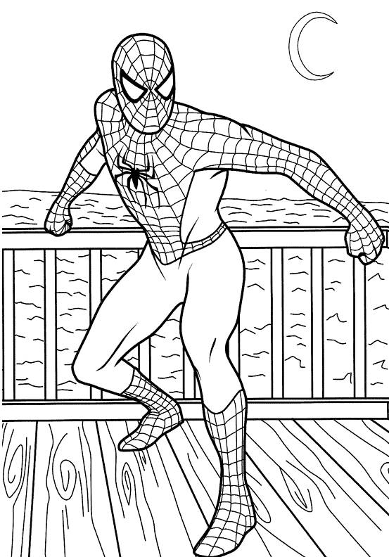 Free coloring and drawings Spiderman super hero Coloring page