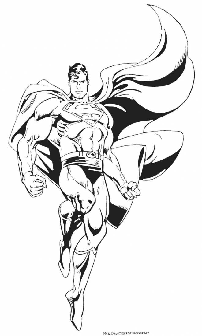 Free coloring and drawings Vector Superman Coloring page