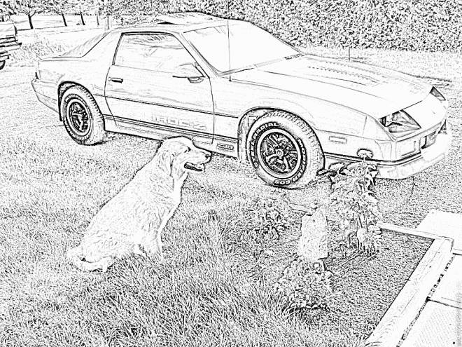 Free coloring and drawings Sport Chevrolet  Coloring page