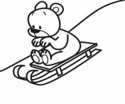 Coloring pages Bear on sledding