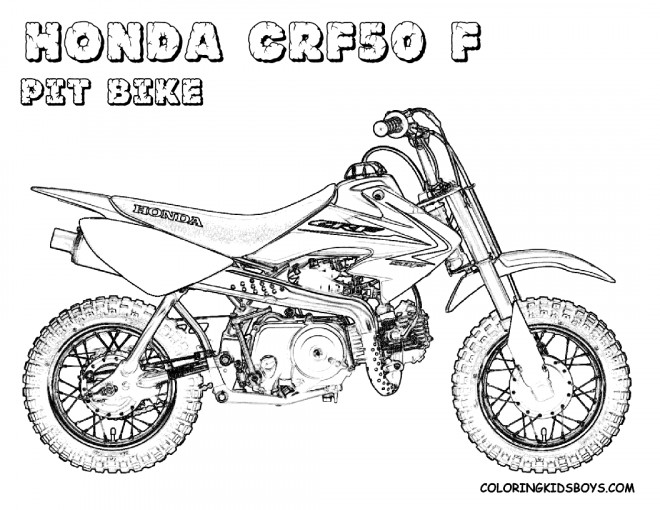 Free coloring and drawings Motocross Honda Pit Bike Coloring page