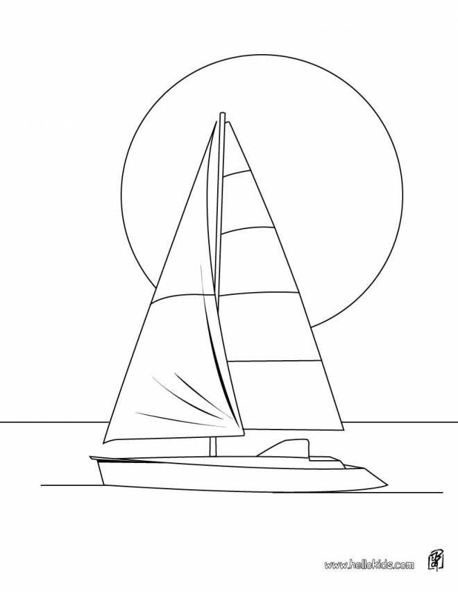 Free coloring and drawings Coloring sport sailboat Coloring page