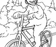 Coloring pages Funny bear on his bike